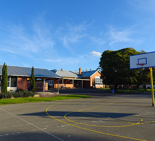 Elliminyt Primary School Grounds